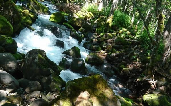 【十勝のオススメ】トムラウシ山、神々の遊ぶ庭へ