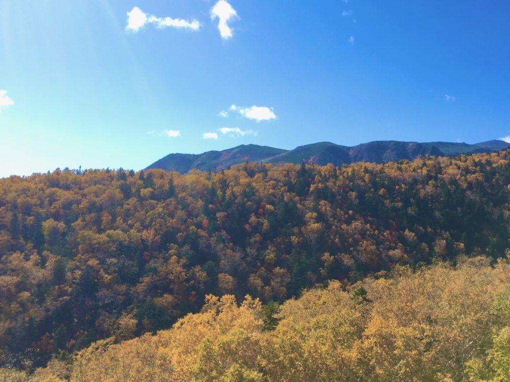 【十勝のオススメ】日本一早い紅葉の地 大雪山系黒岳より